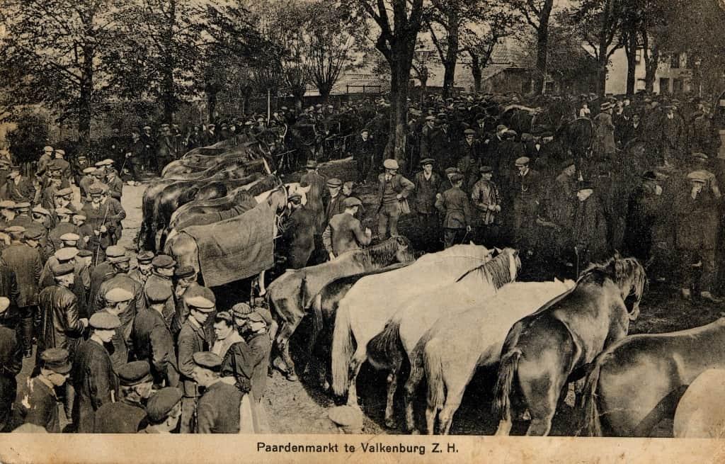 1920 Paardenmarkt